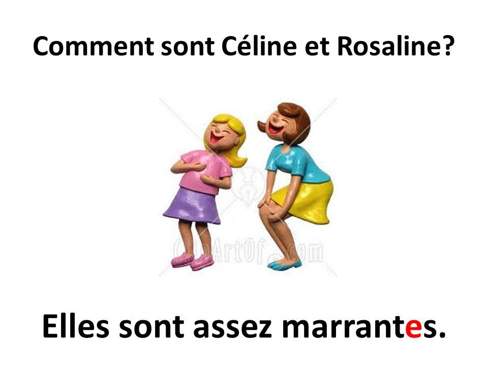 Comment sont Céline et Rosaline