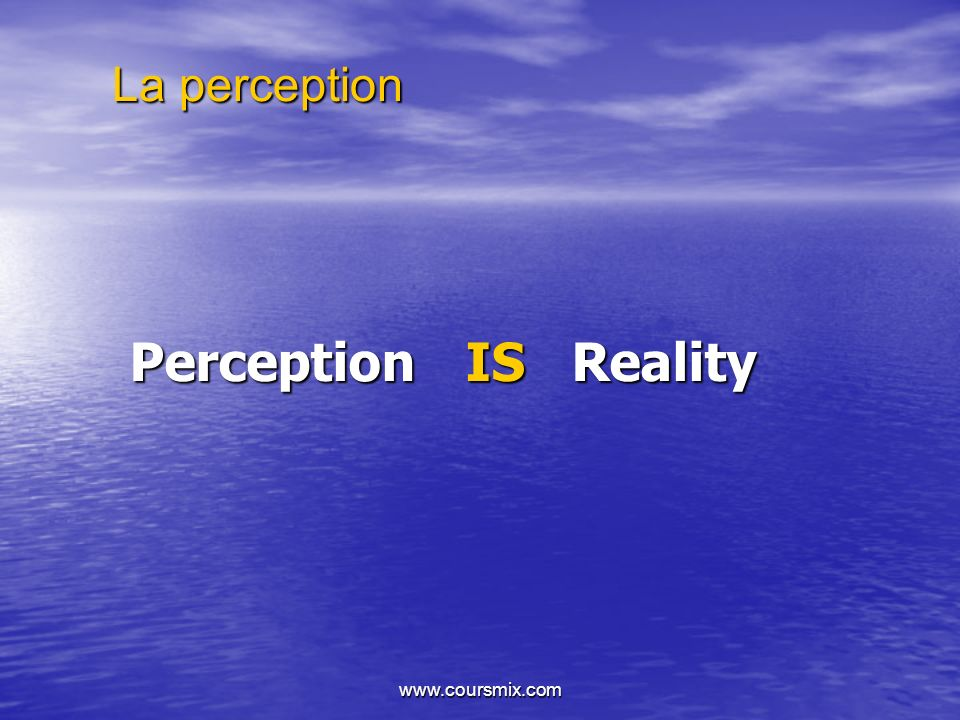 La perception Perception IS Reality www.coursmix.com