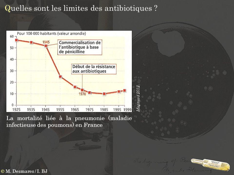 Quelles sont les limites des antibiotiques
