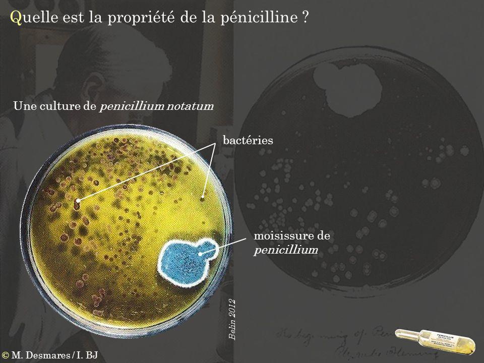 Quelle est la propriété de la pénicilline
