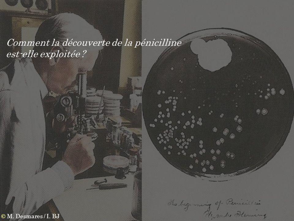 Comment la découverte de la pénicilline est-elle exploitée