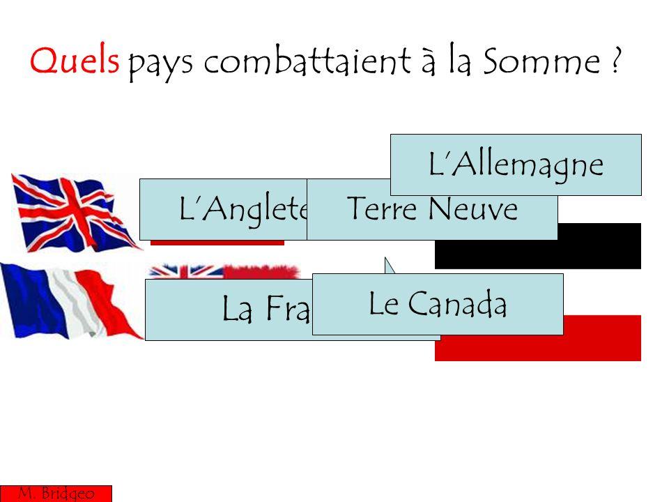 Quels pays combattaient à la Somme
