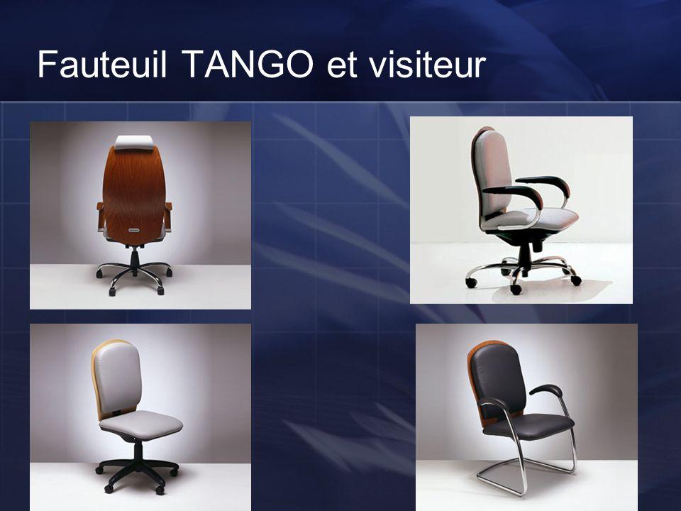 Fauteuil TANGO et visiteur