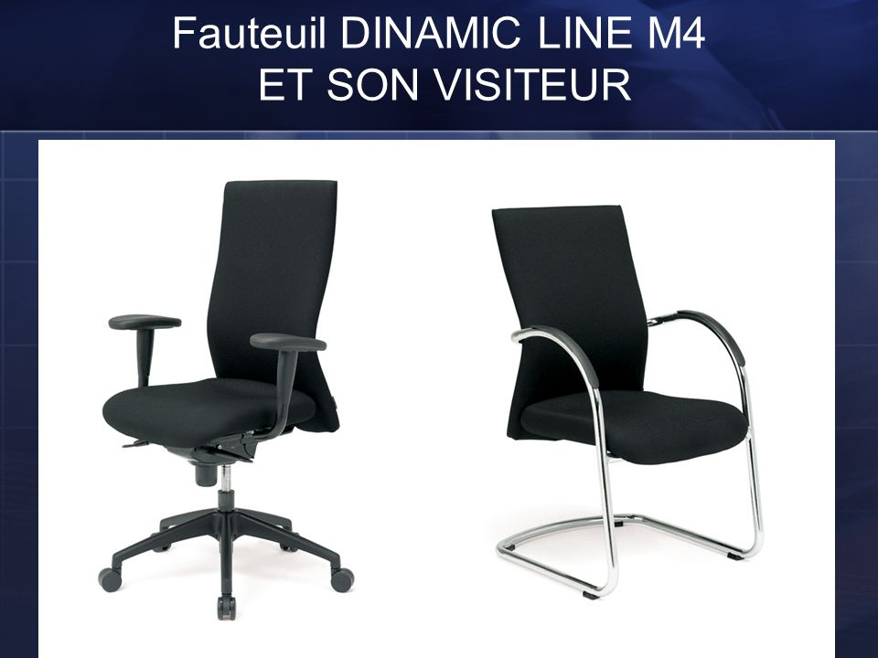 Fauteuil DINAMIC LINE M4 ET SON VISITEUR