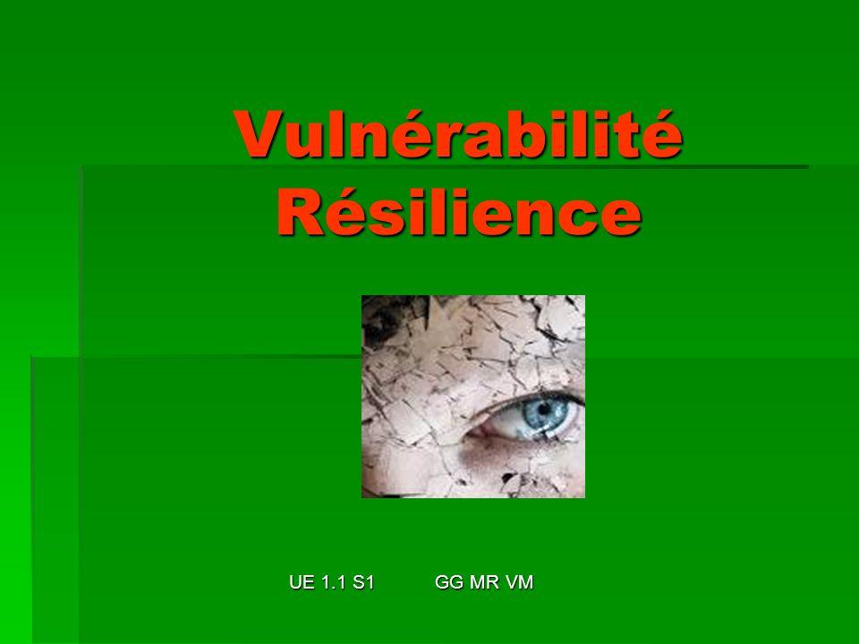 Vulnérabilité Résilience