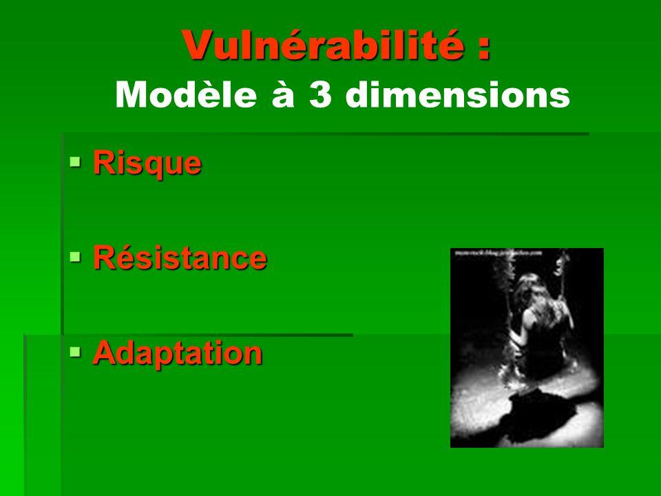 Vulnérabilité : Modèle à 3 dimensions