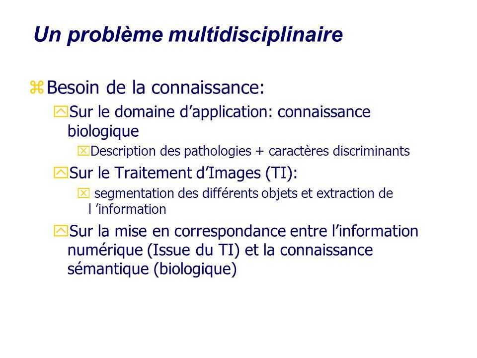Un problème multidisciplinaire