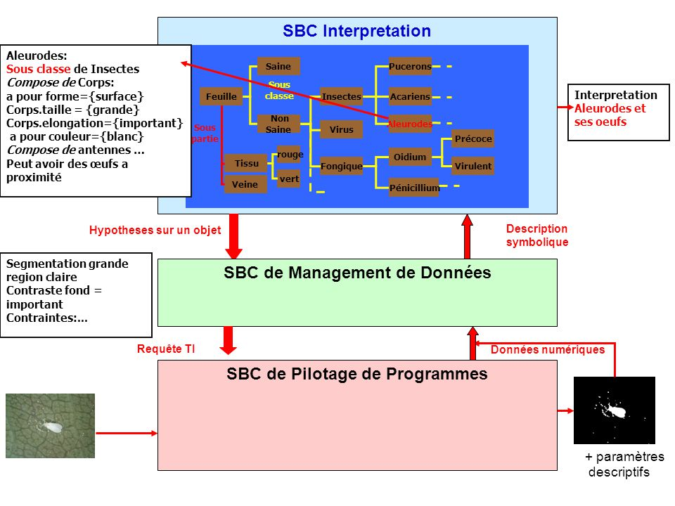 SBC de Pilotage de Programmes SBC Interpretation
