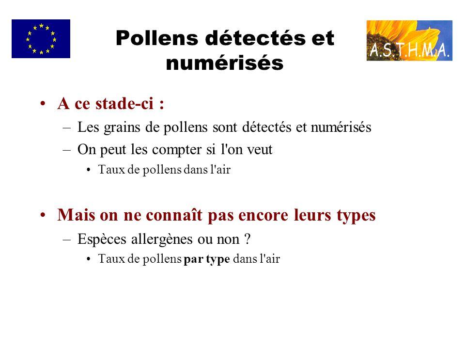 Pollens détectés et numérisés