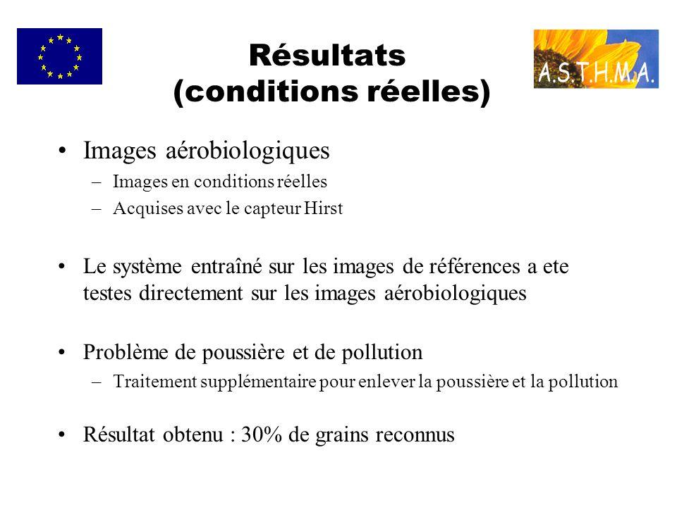 Résultats (conditions réelles)