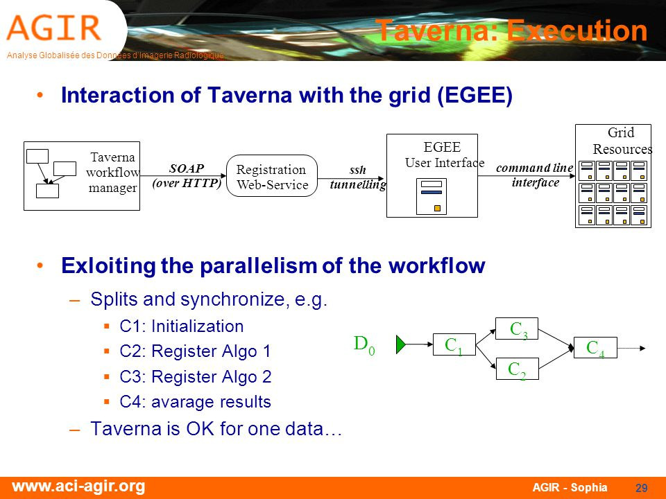 Taverna: Execution Interaction of Taverna with the grid (EGEE)