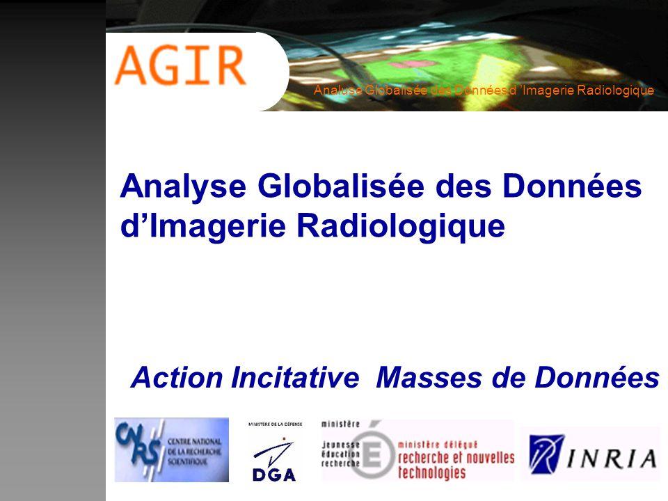 Analyse Globalisée des Données d'Imagerie Radiologique