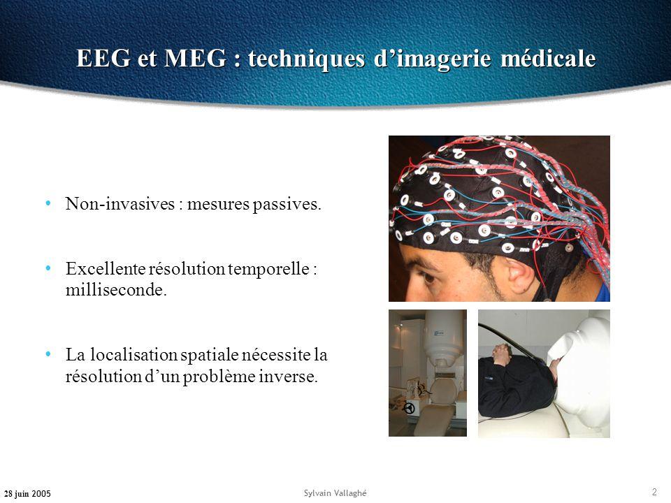 EEG et MEG : techniques d'imagerie médicale