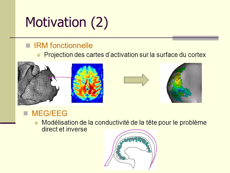 Motivation (2) IRM fonctionnelle MEG/EEG