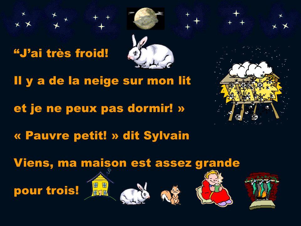 J'ai très froid! Il y a de la neige sur mon lit. et je ne peux pas dormir! » « Pauvre petit! » dit Sylvain.