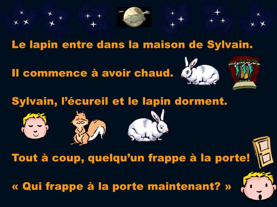 Le lapin entre dans la maison de Sylvain.