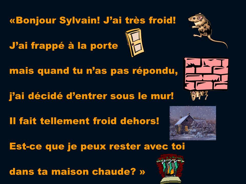 «Bonjour Sylvain! J'ai très froid!