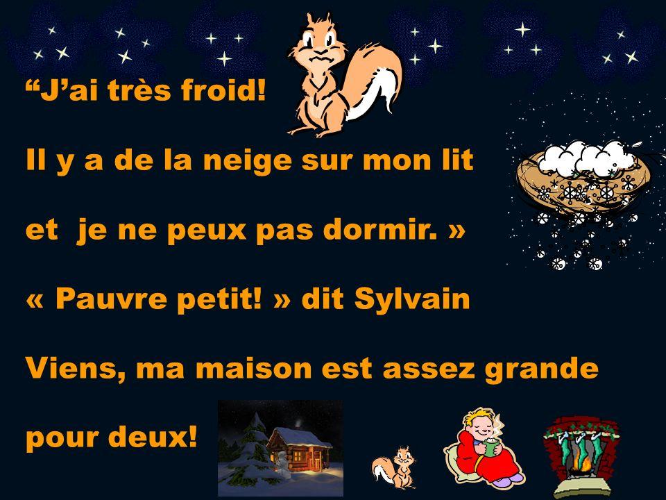 J'ai très froid!Il y a de la neige sur mon lit. et je ne peux pas dormir. » « Pauvre petit! » dit Sylvain.