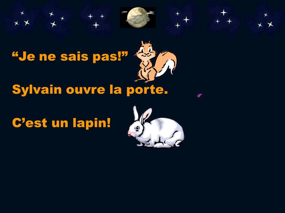 Je ne sais pas! Sylvain ouvre la porte. C'est un lapin!