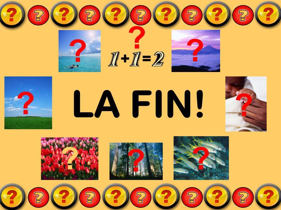 + = LA FIN!