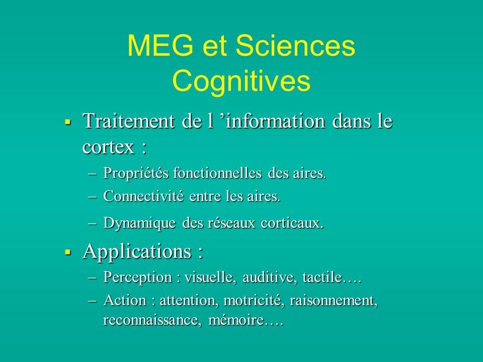 MEG et Sciences Cognitives