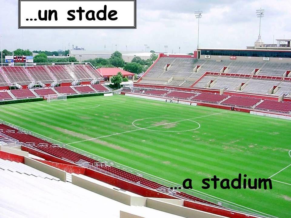 …un stade …a stadium
