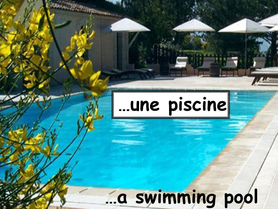 …une piscine …a swimming pool