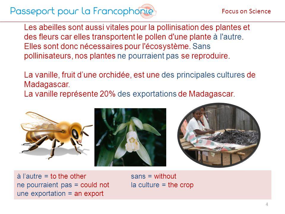 Les abeilles sont aussi vitales pour la pollinisation des plantes et des fleurs car elles transportent le pollen d une plante à l autre. Elles sont donc nécessaires pour l écosystème. Sans pollinisateurs, nos plantes ne pourraient pas se reproduire. La vanille, fruit d'une orchidée, est une des principales cultures de Madagascar. La vanille représente 20% des exportations de Madagascar.