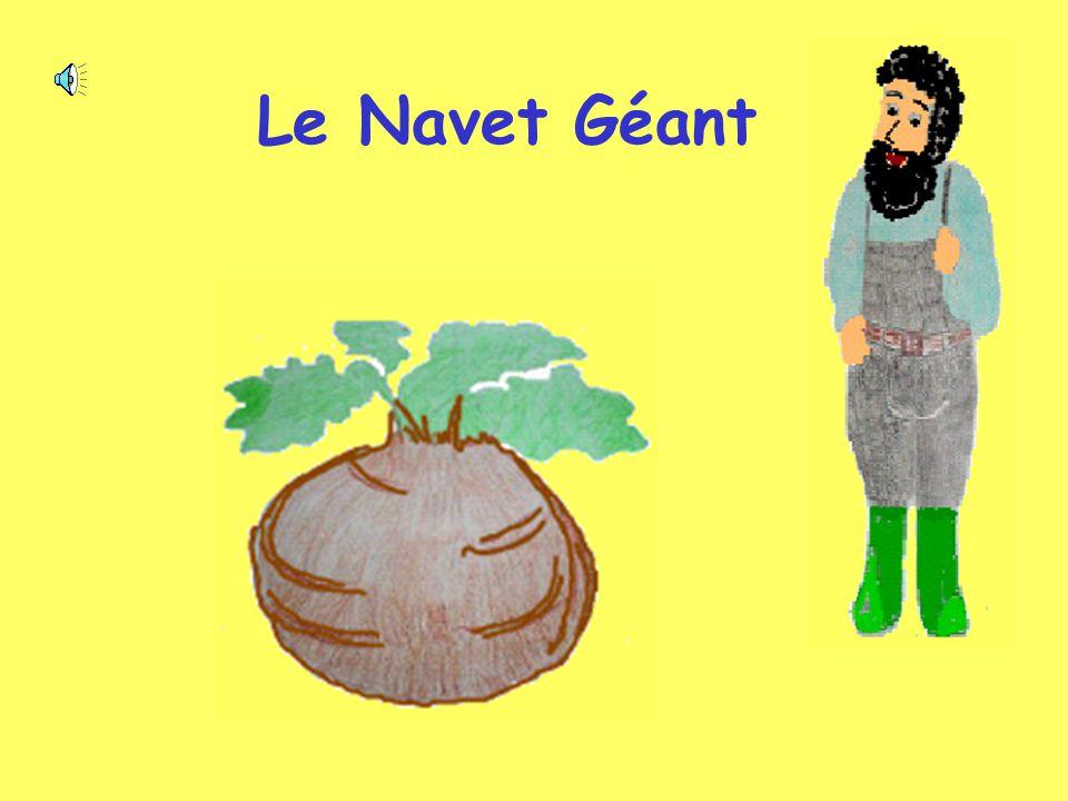 Le Navet Géant