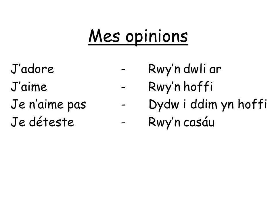 Mes opinions J'adore - Rwy'n dwli ar J'aime - Rwy'n hoffi