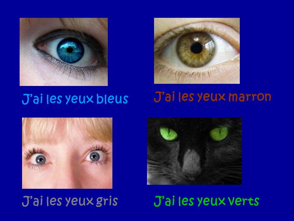 J'ai les yeux marron J'ai les yeux bleus J'ai les yeux gris J'ai les yeux verts