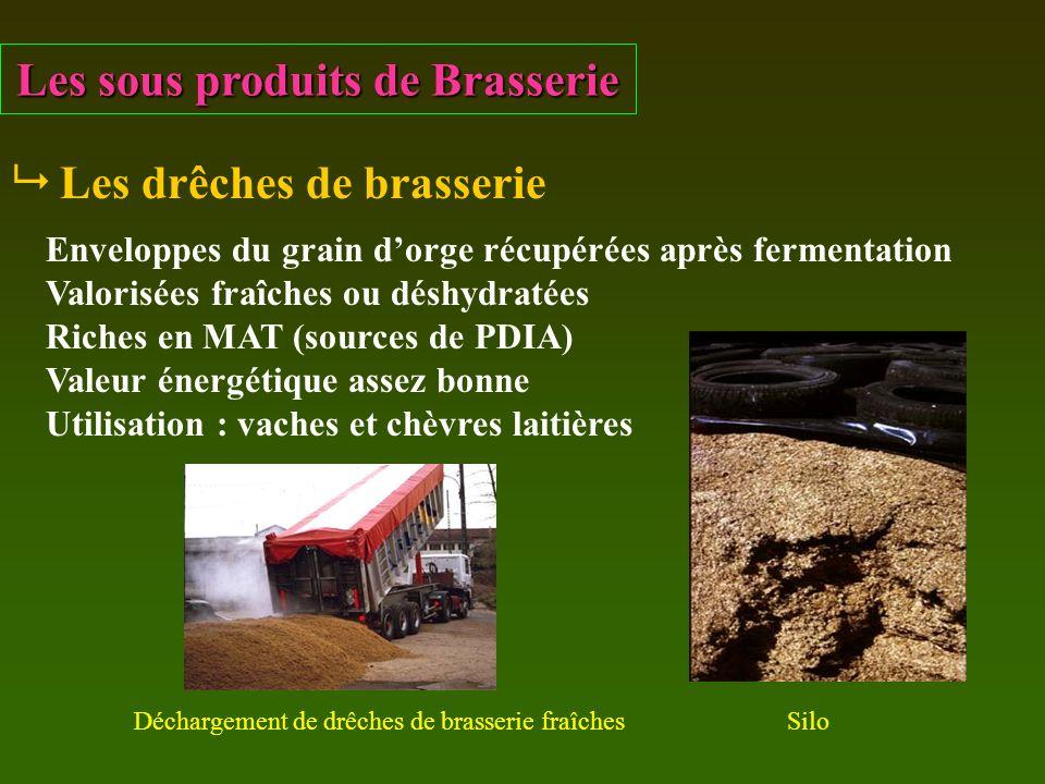 Les sous produits de Brasserie