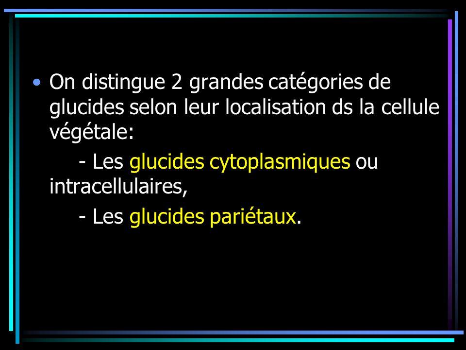 On distingue 2 grandes catégories de glucides selon leur localisation ds la cellule végétale: