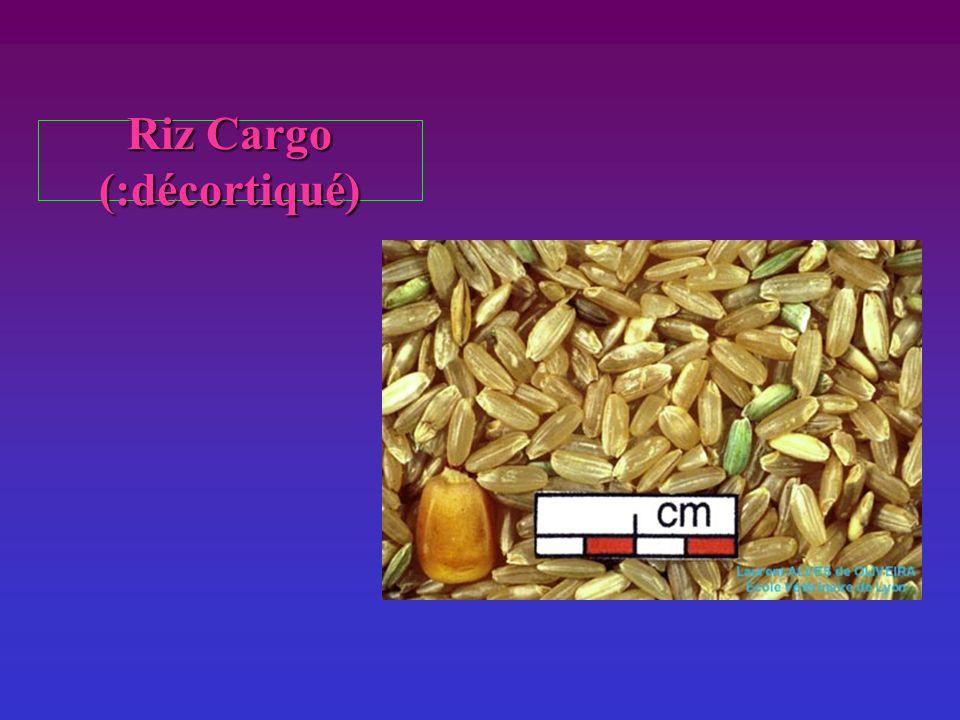 Riz Cargo (:décortiqué)
