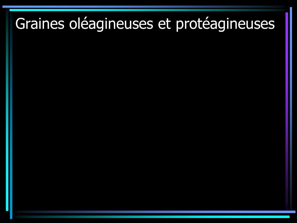 Graines oléagineuses et protéagineuses