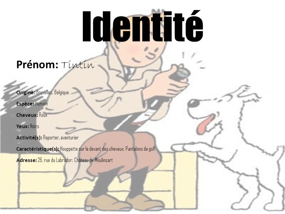 Identité Prénom: Tintin Origine: Bruxelles, Belgique Espèce: Humain