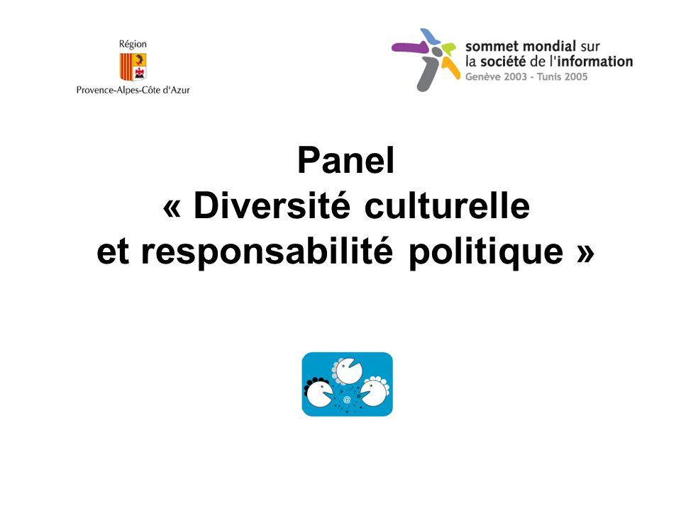Panel « Diversité culturelle et responsabilité politique »