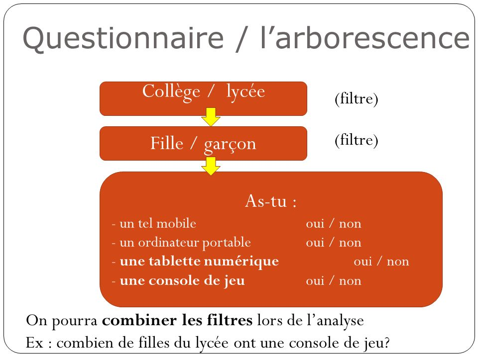 Questionnaire / l'arborescence