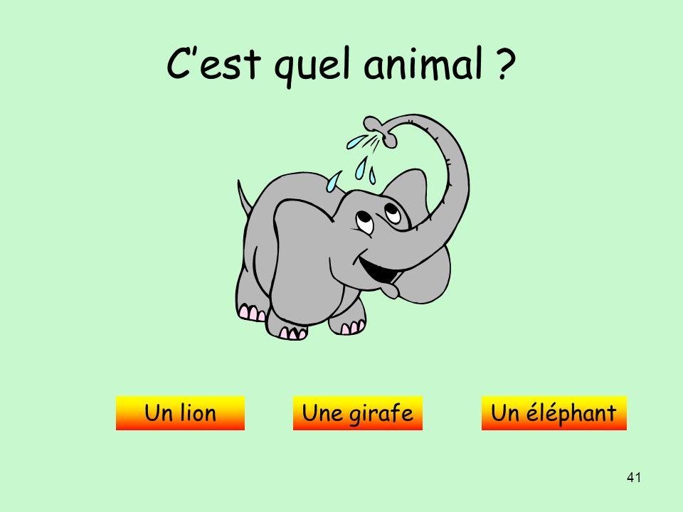 C'est quel animal Un lion Une girafe Un éléphant
