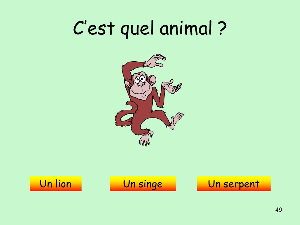 C'est quel animal Un lion Un singe Un serpent