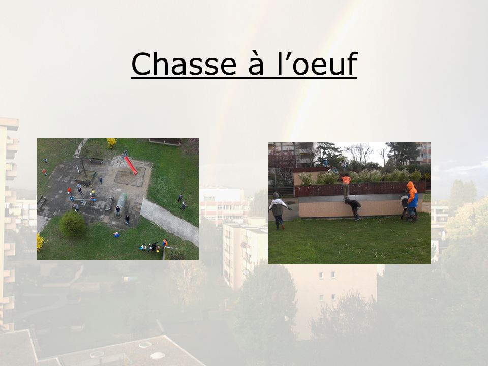 Chasse à l'oeuf