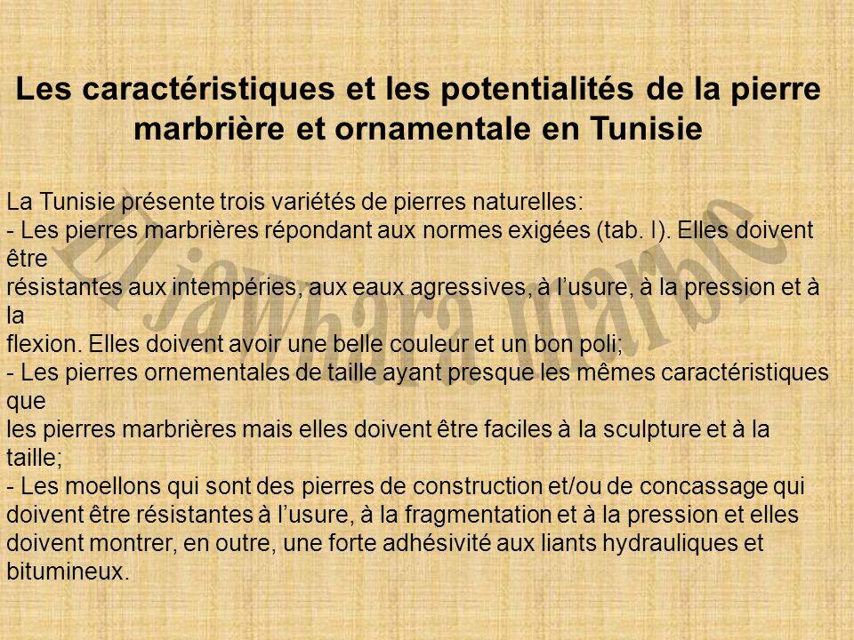 El jawhara marbre Les caractéristiques et les potentialités de la pierre marbrière et ornamentale en Tunisie.