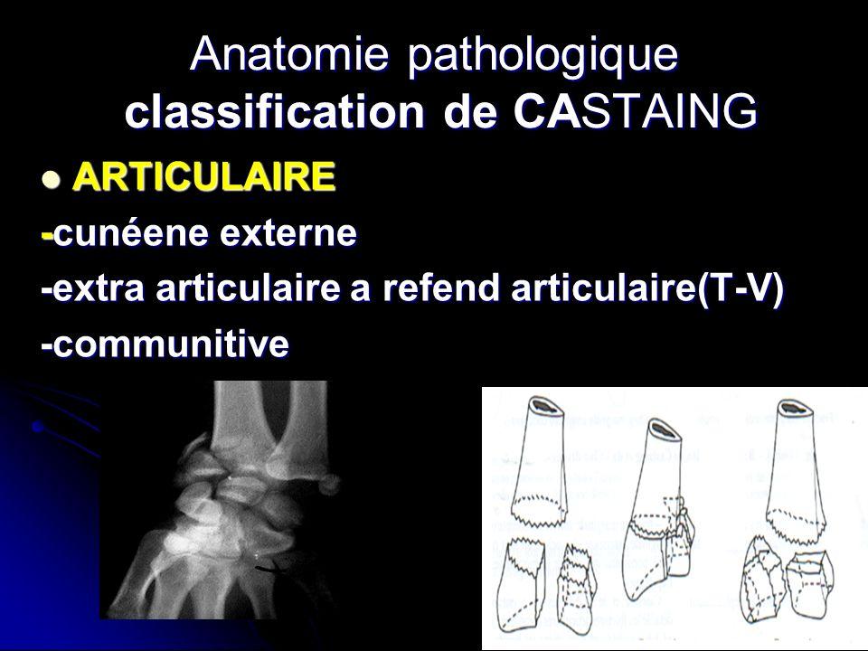 Anatomie pathologique classification de CASTAING