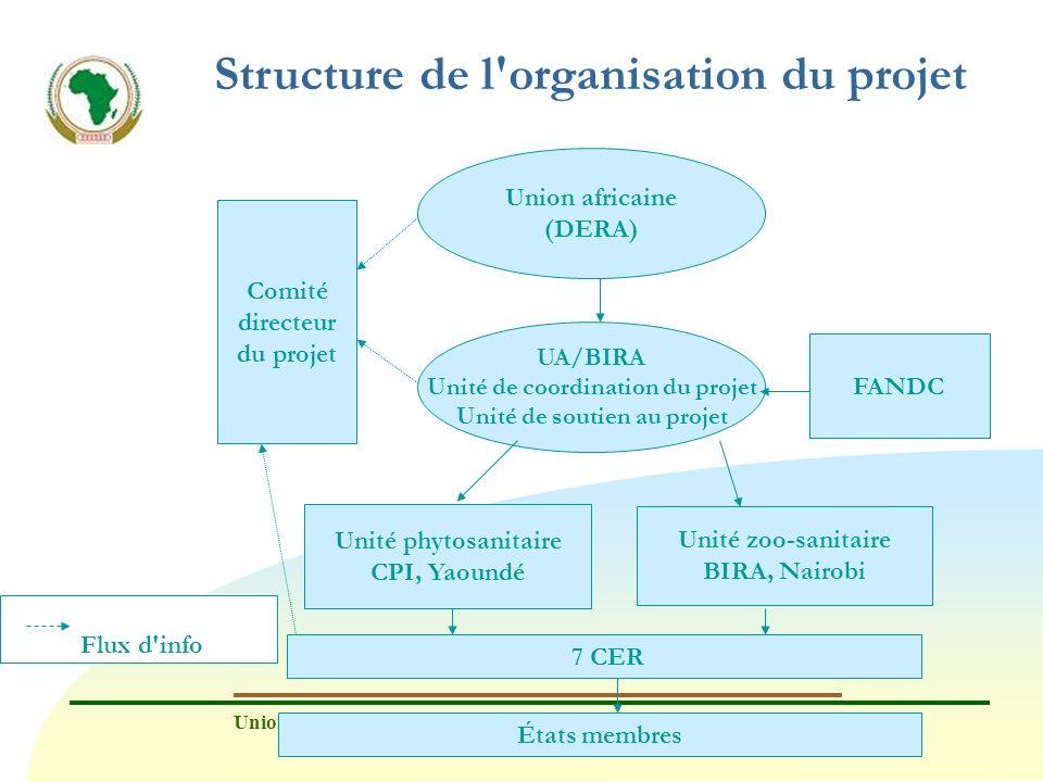 Structure de l organisation du projet