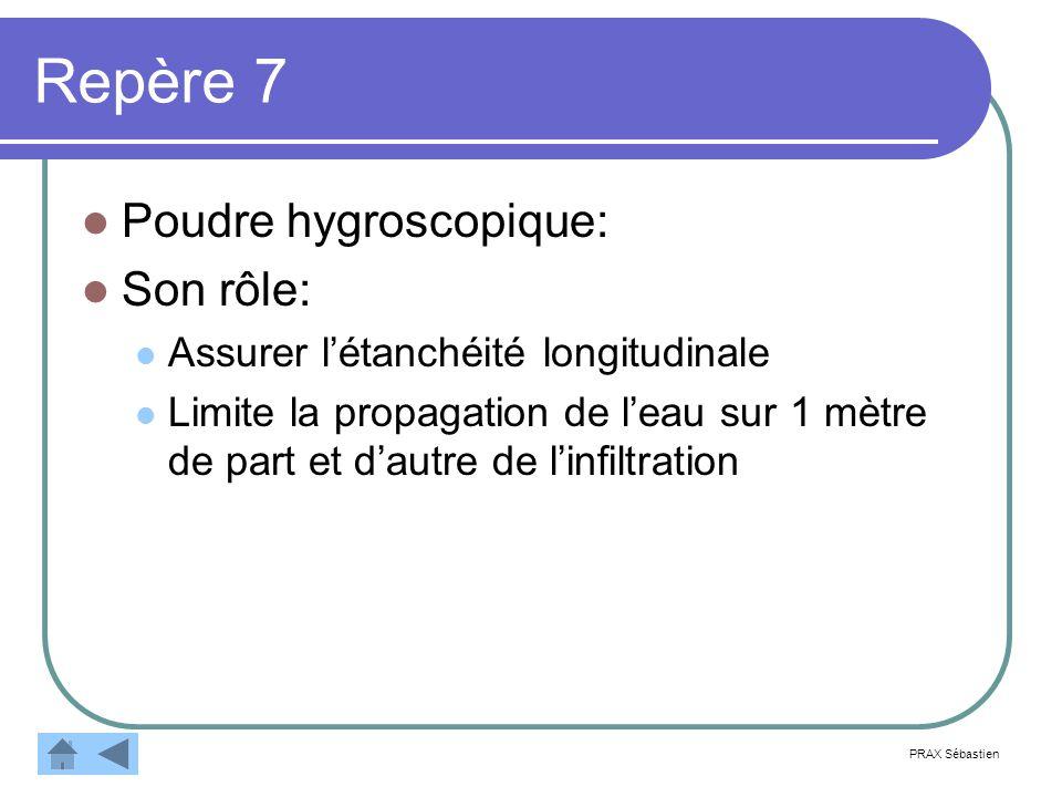 Repère 7 Poudre hygroscopique: Son rôle: