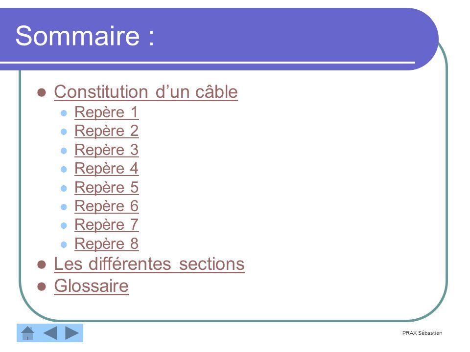 Sommaire : Constitution d'un câble Les différentes sections Glossaire