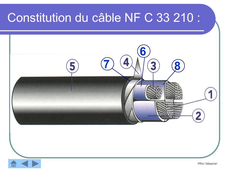Constitution du câble NF C 33 210 :