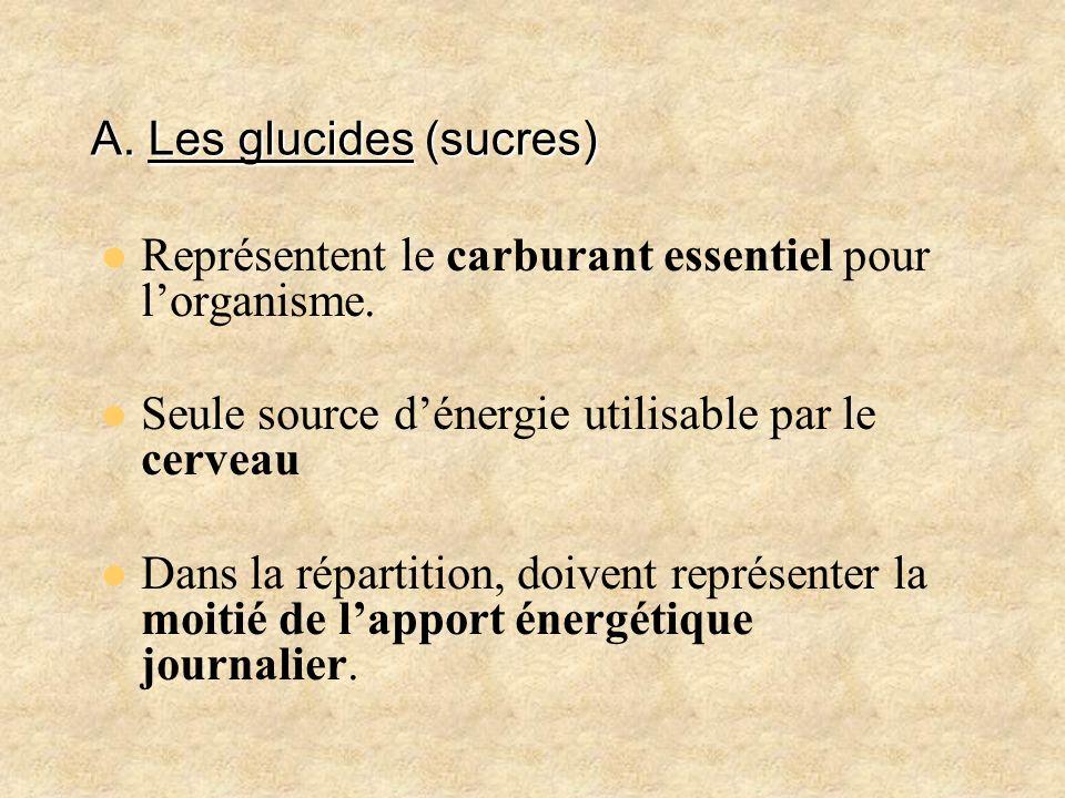 A. Les glucides (sucres)