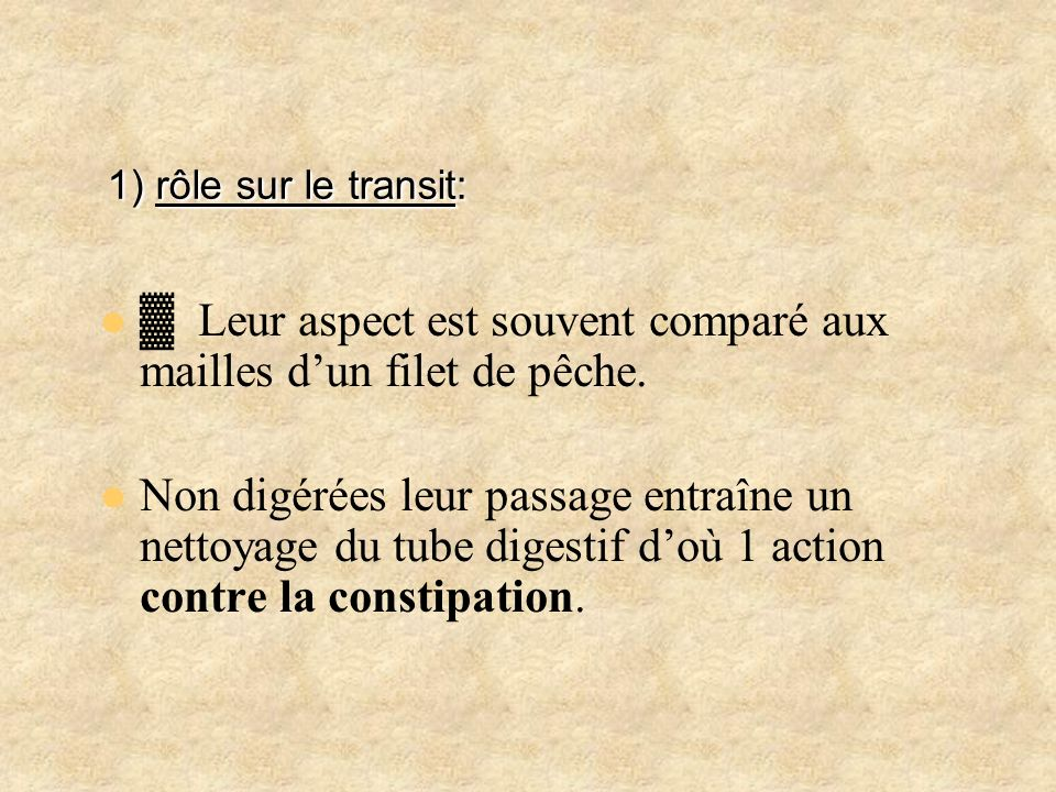 1) rôle sur le transit: ▓ Leur aspect est souvent comparé aux mailles d'un filet de pêche.