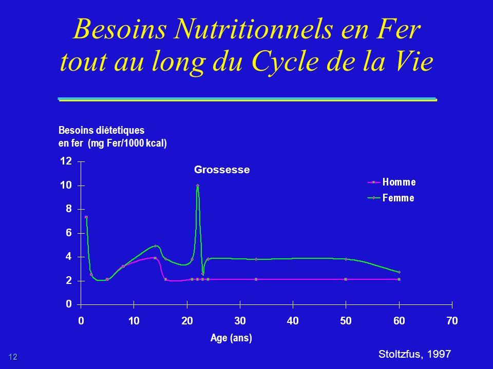 Besoins Nutritionnels en Fer tout au long du Cycle de la Vie